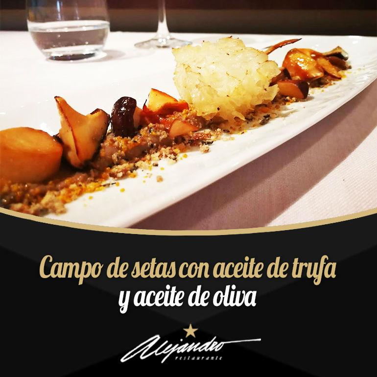 Campo de setas Restaurante Almería