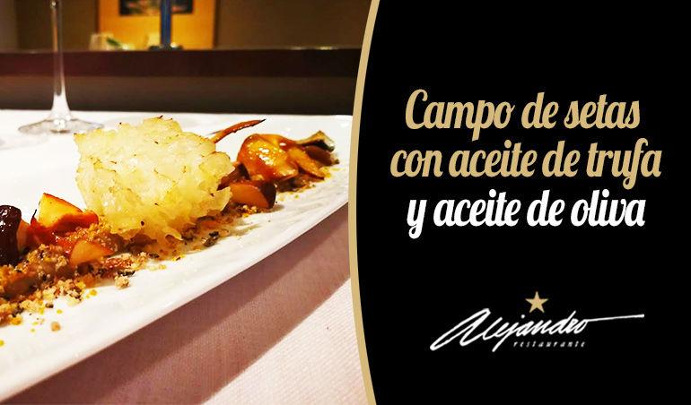 Campo de setas Restaurante Roquetas de Mar