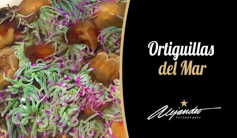 Restaurante Almeria