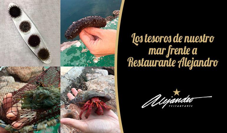 Restaurante Alejandro Almería Roquetas de Mar